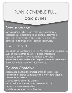 Plan-Contable-Full-Pymes-Estudio-Contable-Nilda-Salvucci